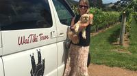 Full-Day Tour of Waiheke Island including Wine Tasting