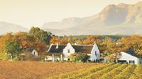Half-Day Cape Winelands Tour from Cape Town