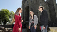 Admission Ticket To Bunratty Castle And Folk Park