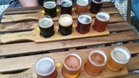 Oporto Beer and Brewery Experience