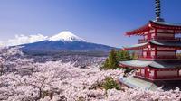 Cherry Blossom Festival with Visit to Arakura Sengen Shrine in Kawaguchiko from Tokyo