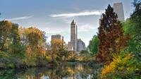 Central Park and Metropolitan Museum of Art Private NYC Combo Tour