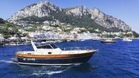 Private Island of Capri Boat Tour for Couples