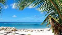Private Island Tour Of Barbados