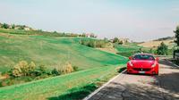 Ferrari FF Road Test Drive