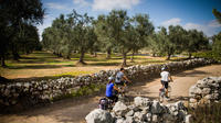 Cycling Across Salento: Capo di Leuca 4-Hour Bike Tour
