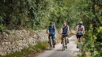 Lecce to Cesine Protected Natural Reserve Full-Day Bike Tour