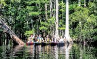 3-Hour Adventure Challenge Guided Kayak Tour