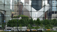 Downtown Manhattan Experience: Financial District, WTC and Battery Park Walking Tour