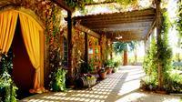 Private 6-Hour Napa and Sonoma Luxury Wine Tour