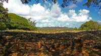 Oahu Small Group Sacred Sites Tour