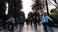 Bike Tour of Málaga (1hr)