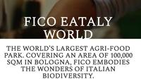 Discover Fico: the largest Food and Wine Park in Europe from Florence