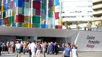centre-pompidou-malaga-acces-coupe-file