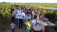 Nadal de la Boadella Estate Tour with Mediterranean Brunch