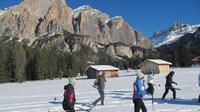 An easy snowshoe guided tour in Alta Badia from Sarè-Armentarola to Malga Valparola