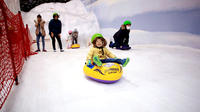 Seoul One Mount Snow Park and Paju Lotte Premium Outlet Day Trip