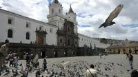 Private Sightseeing Tour Historic Centre Quito