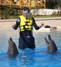 Riviera Maya Dolphin Trainer for a Day Program