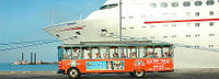 San Diego Shore Excursion: San Diego Hop-On Hop-Off Trolley*