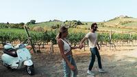 Vespa Small-Group Day Trip to the Chianti Wine Region