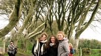 Full-day Giants Causeway and Game of Thrones Film Sites Tour from Belfast