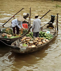 Mekong Delta Discovery Small Group Adventure Tour from Ho Chi Minh City