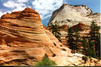Zion National Park Day Tour from Las Vegas