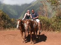 Maui Horseback-Riding Tour with Optional BBQ Lunch