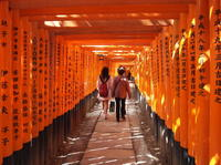 Thousands of Torii at Fushimi Inari Taisha Shrine in Kyoto*