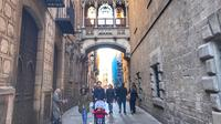 Barcelona in a Day for Kids and Families with Sagrada Familia and Gothic Area