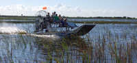 Private Tour: Florida Everglades Luftkissenbootsfahrt und Wildlife Adventure