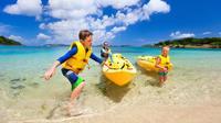 Mangrove Lagoon Kayak Rental in St Thomas