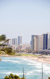 Tel Aviv Private Transfer: Haifa Port to Central Tel Aviv
