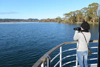 Lake Rotorua Paddle Boat Cruise with Breakfast or Lunch