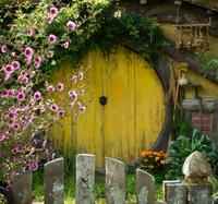 Waitomo Caves and The Lord of the Rings Hobbiton Movie Set Tour from Auckland with Private Transport