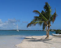 Miami to Key West Round-Trip Transfer