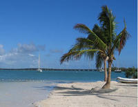 Round-Trip Transfer: Fort Lauderdale to Key West
