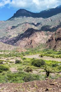 Salta Super Saver: Best of Calchaquí Valley Including Cachi and Cafayate Winery Day Trips