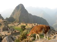 7-Day Lima And Cusco Tour With Overnight At Machu Picchu