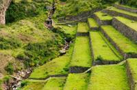 Pisac Inca Ruins*