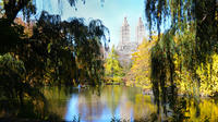 Central Park Afternoon Walking Tour