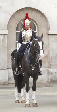 Private Tour: Traditional Black Cab Tour of Royal London