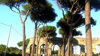 Ancient Appian Way, Catacombs and Roman Countryside Electric Bike Tour