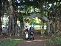 Honolulu Segway Tour: Kapiolani Park, Makalei Beach Park and Queens Surf Beach