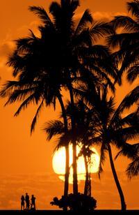 Sunset on the Beach Segway Tour