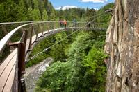 Vancouver Shore Excursion: City Tour and Capilano Suspension Bridge