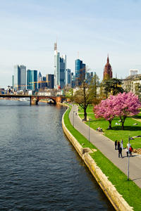 Frankfurt Super Saver: City Highlights Tour plus Full-Day Rhine Valley Trip and Cruise