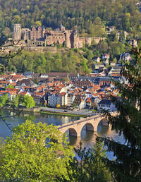Heidelberg and Baden-Baden Tour from Frankfurt