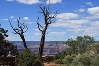 Grand Canyon via Sedona and Navajo Reservation